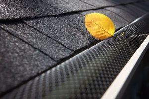 leaf gutter guard