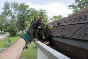 person cleaning leaves and twigs out of their gutters