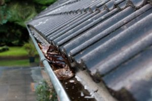 leaky gutters filled with rain water